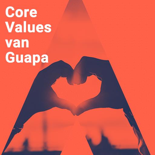 Core values van Guapa E-commerce
